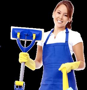 Empresa de limpieza en Griñon