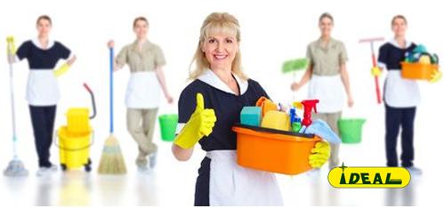 Presupuesto de servicios de limpieza integral en Paracuellos de Jarama.